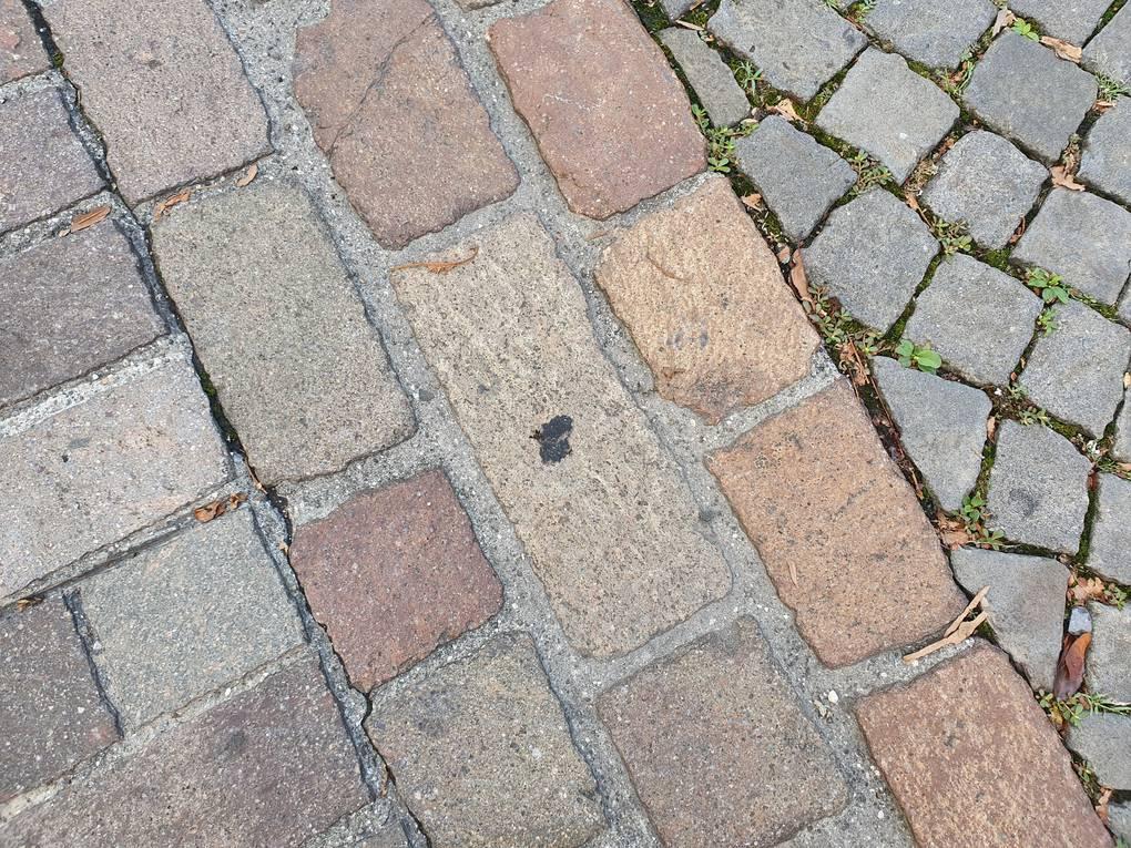 Bsezisteine: Indem die Fugen auszementiert wird das grobe Pflaster rollstuhlgängig.